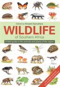 The Wildlife Of South Africa - 2860596266