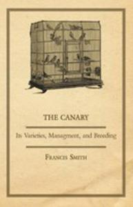 The Canary - 2855746726
