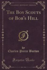 The Boy Scouts Of Bob's Hill - 2854051971