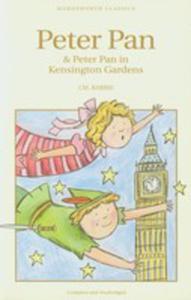Peter Pan In Kensington Gardens - 2839982372