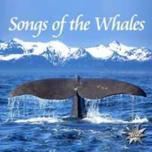 Songs Of The Whales - 2839624690