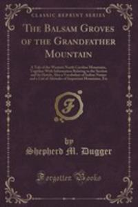 The Balsam Groves Of The Grandfather Mountain - 2854807105