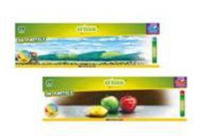 Pastele Olejne 24 Kolorów Cricco - 2856368883