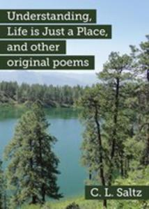 Understanding, Life Is Just A Place, And Other Original Poems - 2852922014