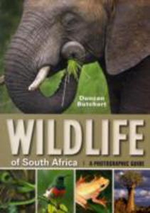 Wildlife Of South Africa - 2840026931