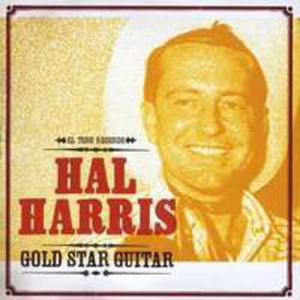Gold Star Guitar - 2839465099