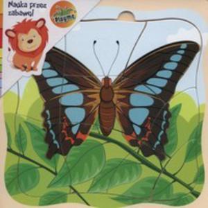 Puzzle Drewniane Motyl - 2840392974
