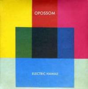 7 - Electric Hawaii - Ltd - - 2847435216