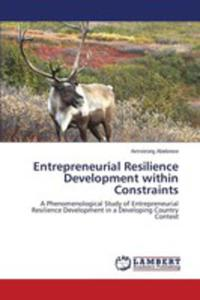 Entrepreneurial Resilience Development Within Constraints - 2857268275