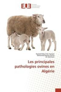 Les Principales Pathologies Ovines En Algérie - 2857262457