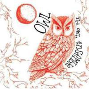 Owl - 2847641404