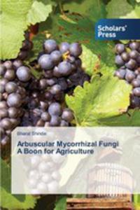 Arbuscular Mycorrhizal Fungi A Boon For Agriculture - 2857269330