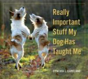 Really Important Stuff My Dog Has Taught Me - 2839953152