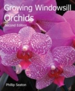 Growing Windowsill Orchids - 2844455506