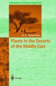 Plants In The Deserts Of The Middle East - 2840169331