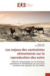 Les Enjeux Des Contraintes Alimentaires Sur La Reproduction Des Ovins - 2855745593