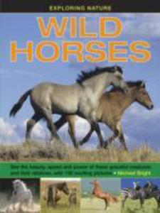 Wild Horses - 2839993298