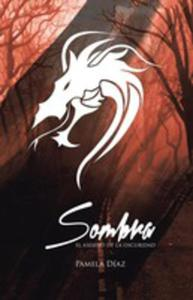 Sombra, El Asesino De La Oscuridad - 2853983580