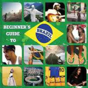 Beginner's Guide To Braz - 2839388034