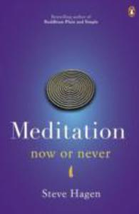 Meditation Now Or Never - 2839879172