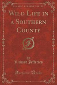 Wild Life In A Southern County (Classic Reprint) - 2852947441
