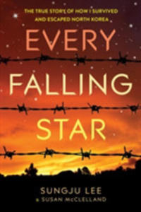 Every Falling Star - 2849941560