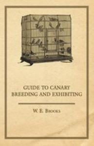 Guide To Canary Breeding And Exhibiting - 2854886274