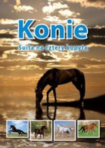 Konie Suita Na Cztery Kopyta - 2839324749
