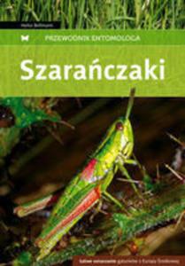 Szarańczaki. Przewodnik Entomologa - 2839257010
