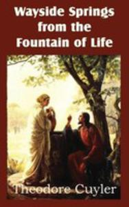 Wayside Springs From The Fountain Of Life - 2849004695