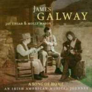 Song Of Home: An Irish American Musical Journey - 2839205950