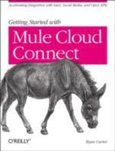 Getting Started With Mule Cloud Connect - 2851184589