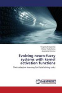 Evolving Neuro-fuzzy Systems With Kernel Activation Functions - 2857255348