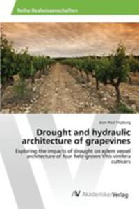 Drought And Hydraulic Architecture Of Grapevines - 2857268492