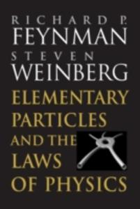 Elementary Particles And The Laws Of Physics - 2841703129