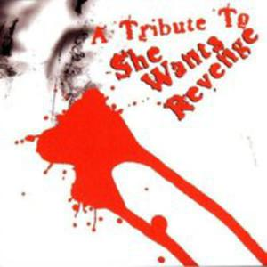 Tribute To She Wants - 2839310253