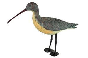 Ptak kulik wielki  - 2833019186