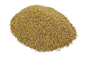Koniczyna czerwona (łąkowa) kwalifikowana, nasiona koniczyny Krynia 5 kg - 5kg - 2833020301