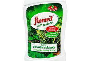 Florovit Pro Natura płynny nawóz do roślin zielonych 1L - 2878770212
