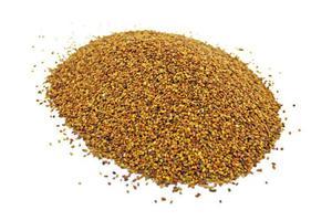 Lucerna siewna kwalifikowana, nasiona lucerny TRIADE - 30 kg - 2865589346