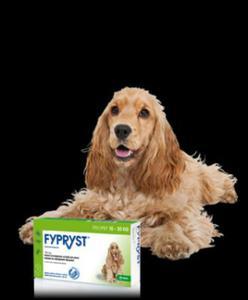 KRKA Fypryst Spot-On dla psów 10-20 kg 3 pipety - 2822930727