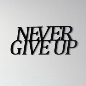Napis na ścianę DekoSign NEVER GIVE UP czarny - 2822983944