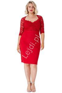 Czerwona sukienka z koronki Plus Size, Goddiva 1544 - 2873005794