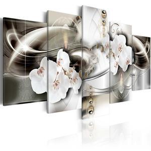 Obraz - Orchidee pomi - 2856740911