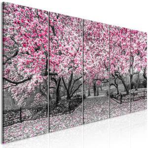 Obraz - Park magnolii (5-cz - 2861754174
