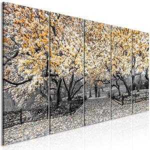 Obraz - Park magnolii (5-cz - 2861754175