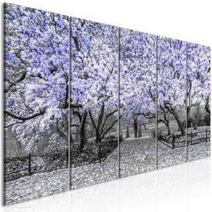 Obraz - Park magnolii (5-cz - 2861754176