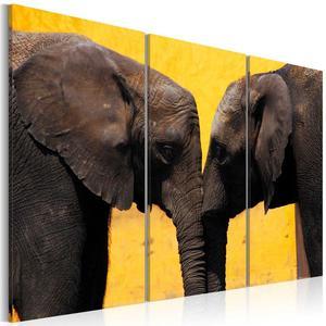Obraz - Całus pary słoni
