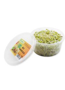 Kiełki brokuła świeże BIO opakowanie 50g - 2842033031