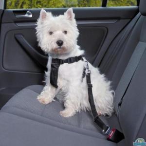 TRIXIE Szelki samochodowe dla psa - 2833049591